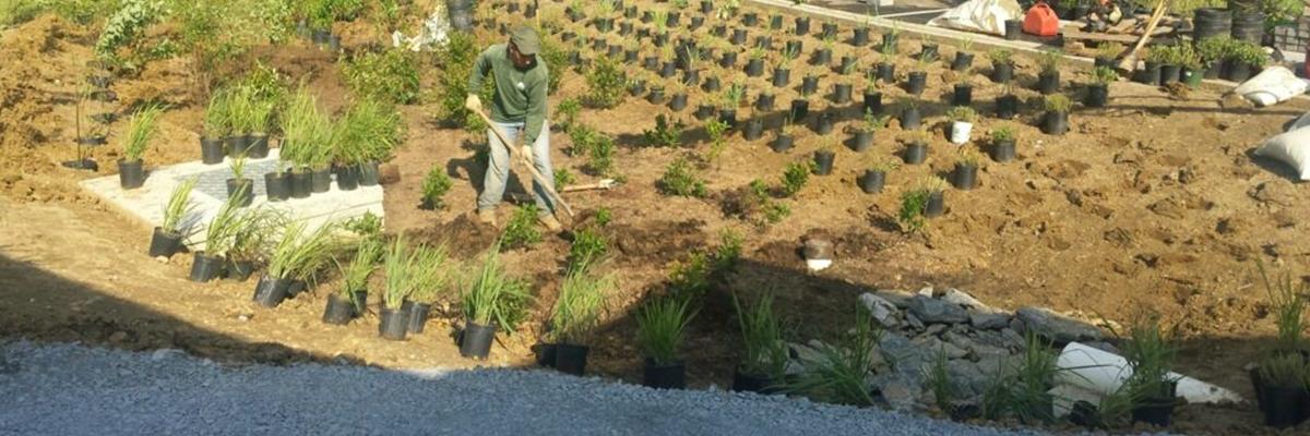 cwp-homepage-slider-man-planting